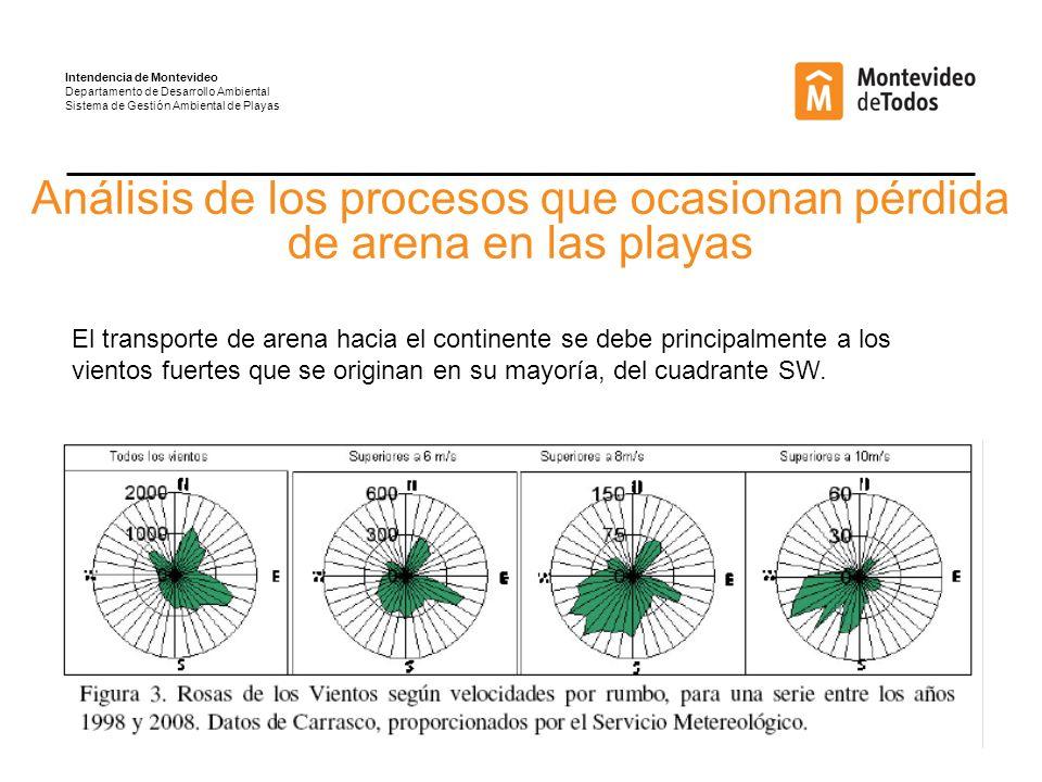 Análisis de los procesos que ocasionan pérdida de arena en las playas