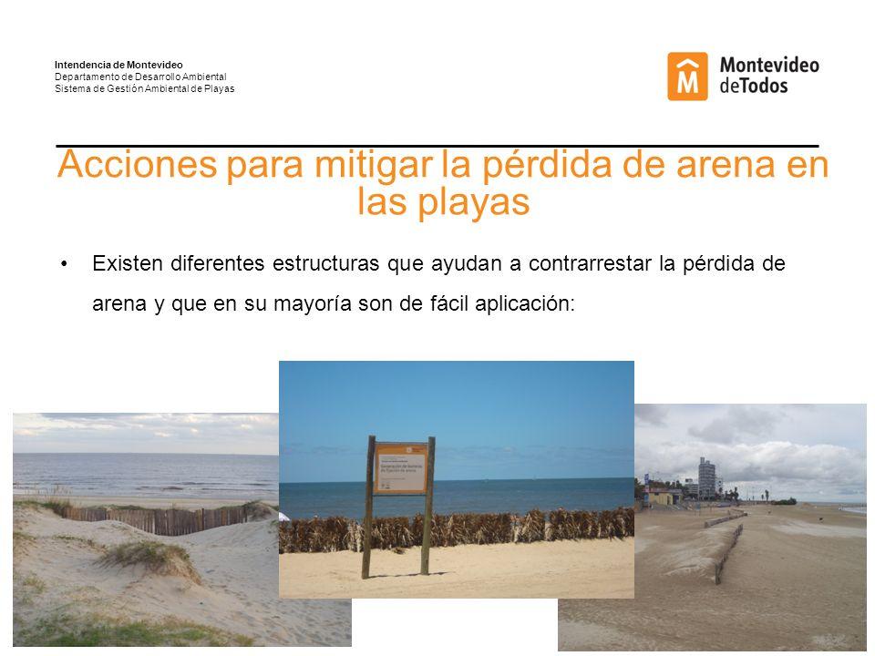 Acciones para mitigar la pérdida de arena en las playas