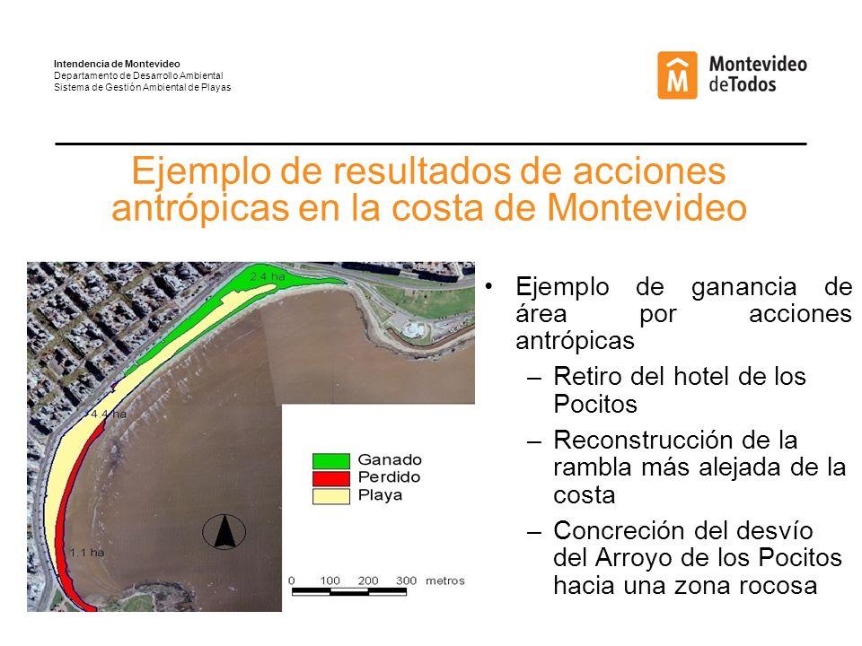 Ejemplo de resultados de acciones antrópicas en la costa de Montevideo