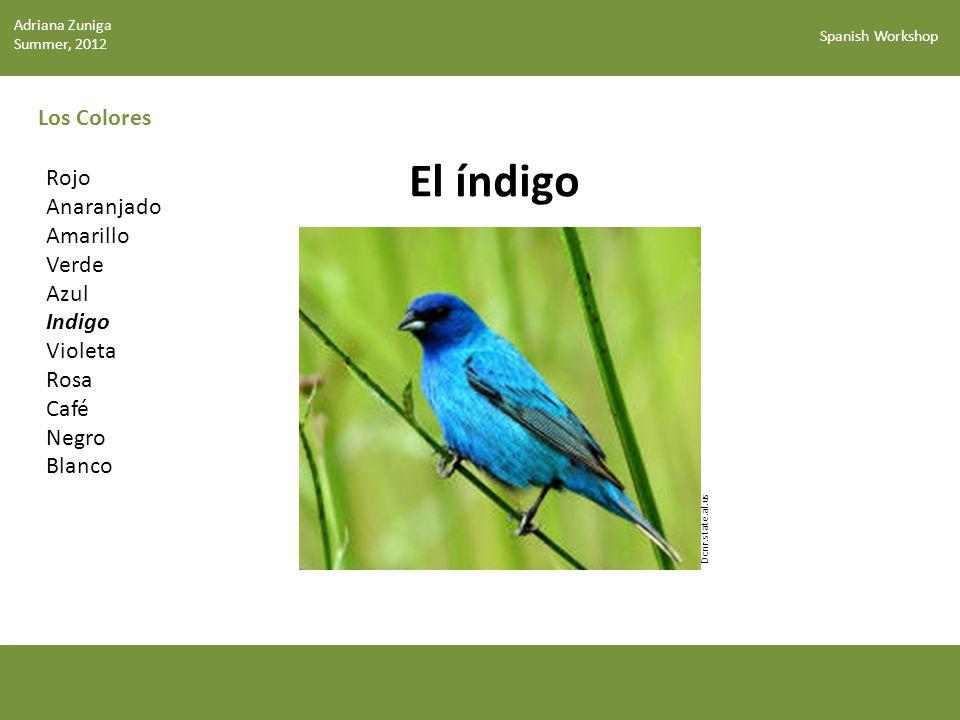 El índigo Los Colores Rojo Anaranjado Amarillo Verde Azul Indigo