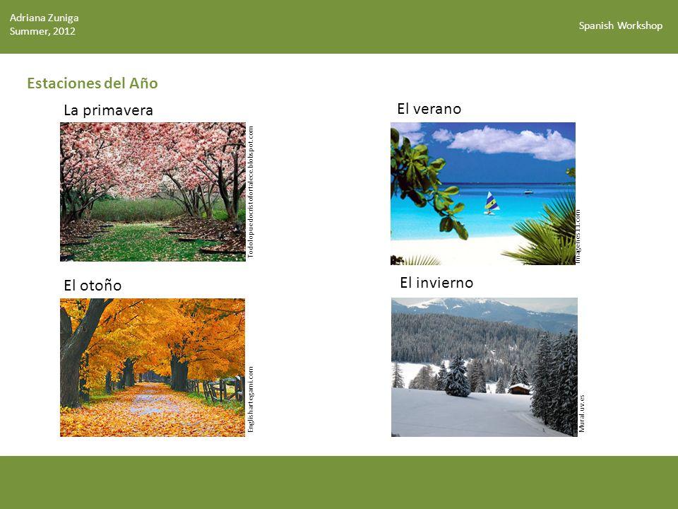 Estaciones del Año La primavera El verano El invierno El otoño