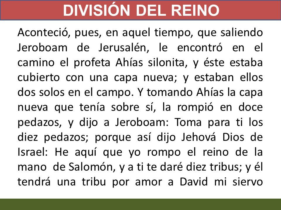 DIVISIÓN DEL REINO