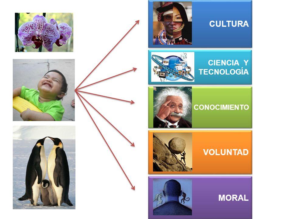 CULTURA CIENCIA Y TECNOLOGÍA CONOCIMIENTO VOLUNTAD MORAL