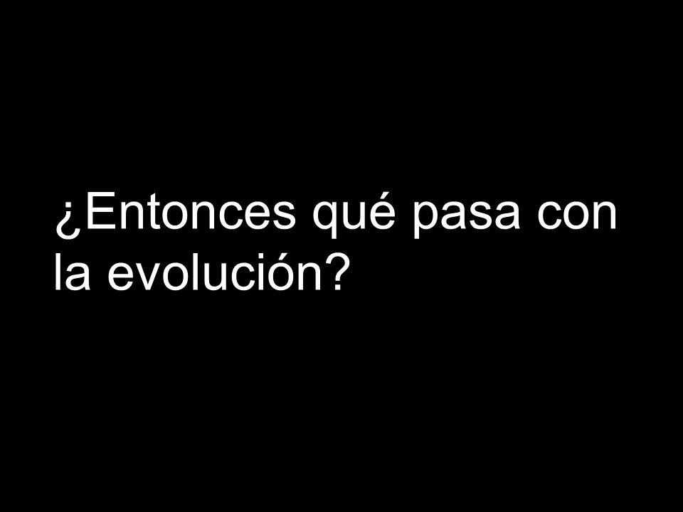¿Entonces qué pasa con la evolución