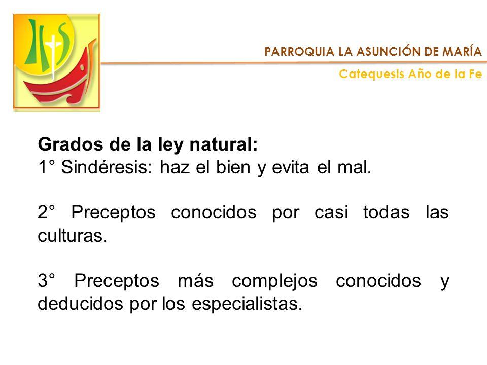 Grados de la ley natural: 1° Sindéresis: haz el bien y evita el mal.