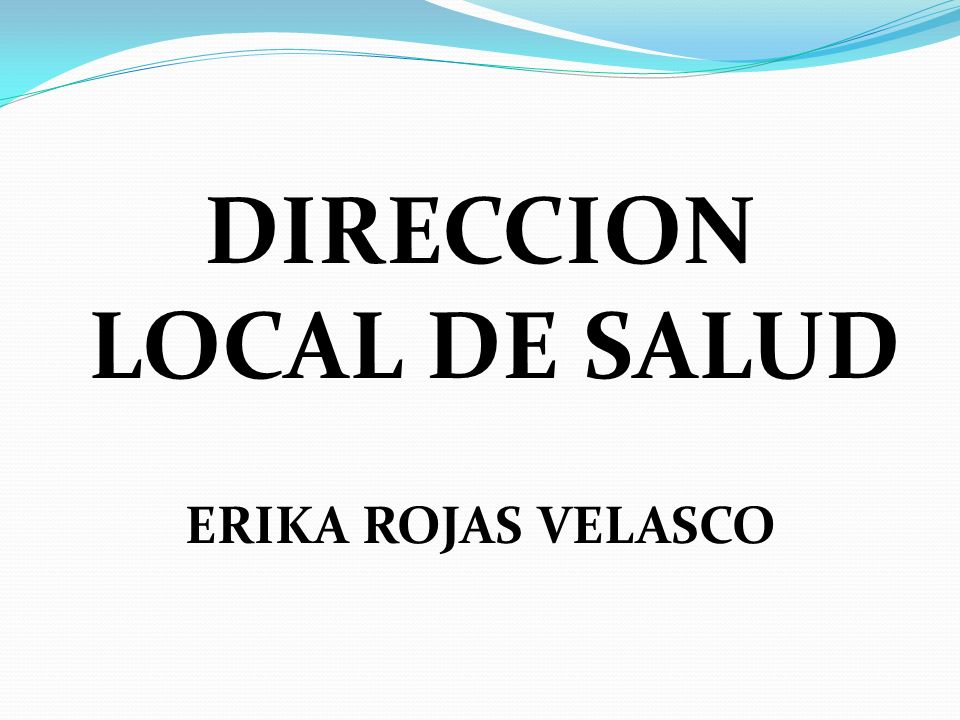 DIRECCION LOCAL DE SALUD
