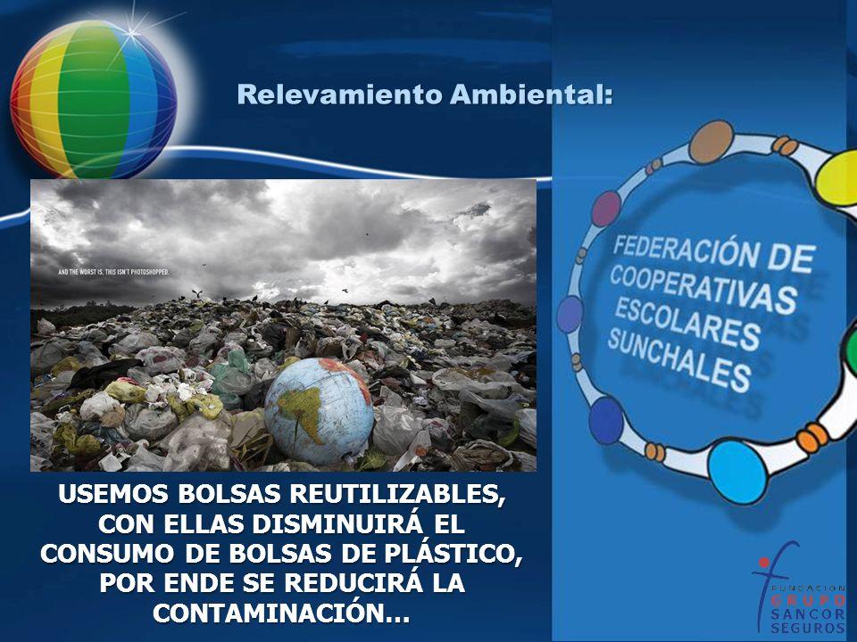 Relevamiento Ambiental: