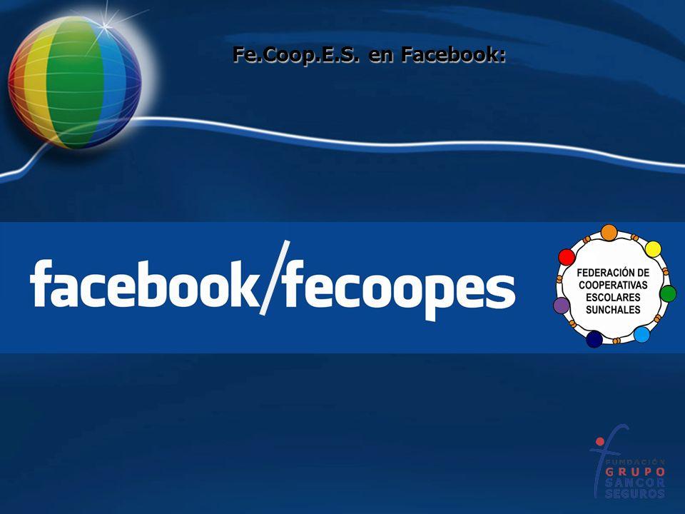 Fe.Coop.E.S. en Facebook: