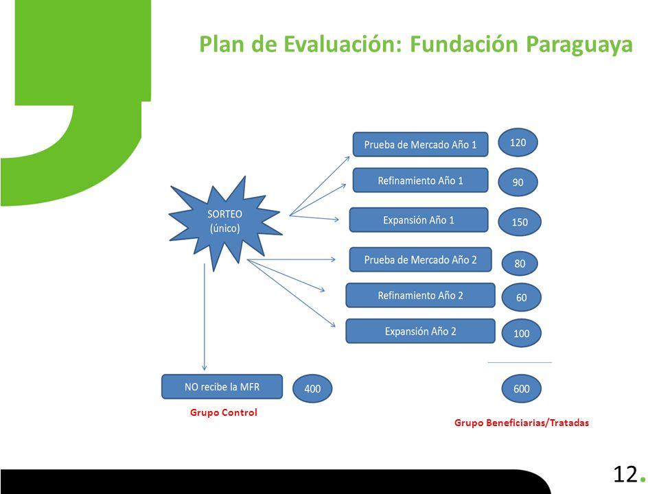 Plan de Evaluación: Fundación Paraguaya