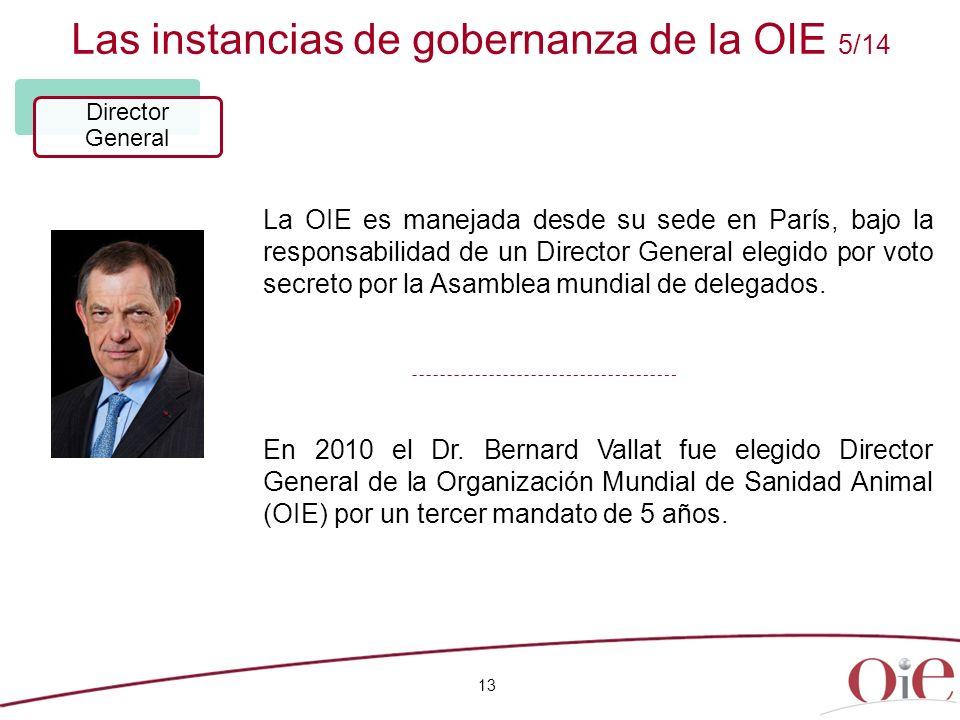 Las instancias de gobernanza de la OIE 5/14