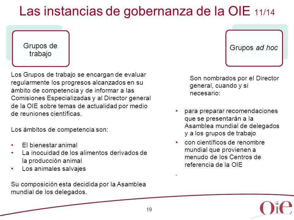 Las instancias de gobernanza de la OIE 11/14