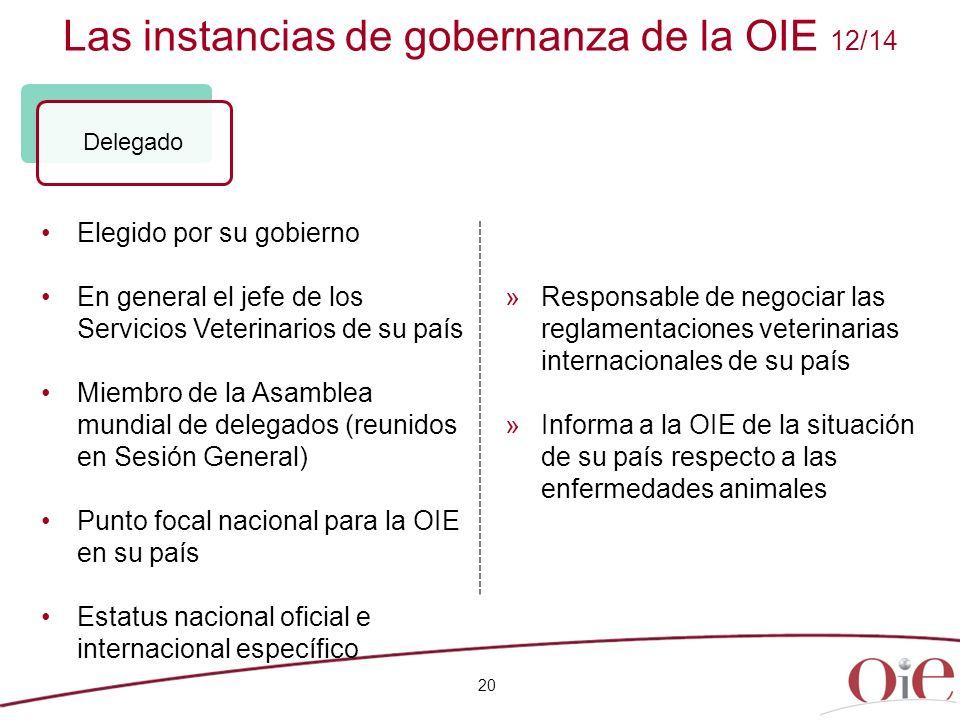 Las instancias de gobernanza de la OIE 12/14