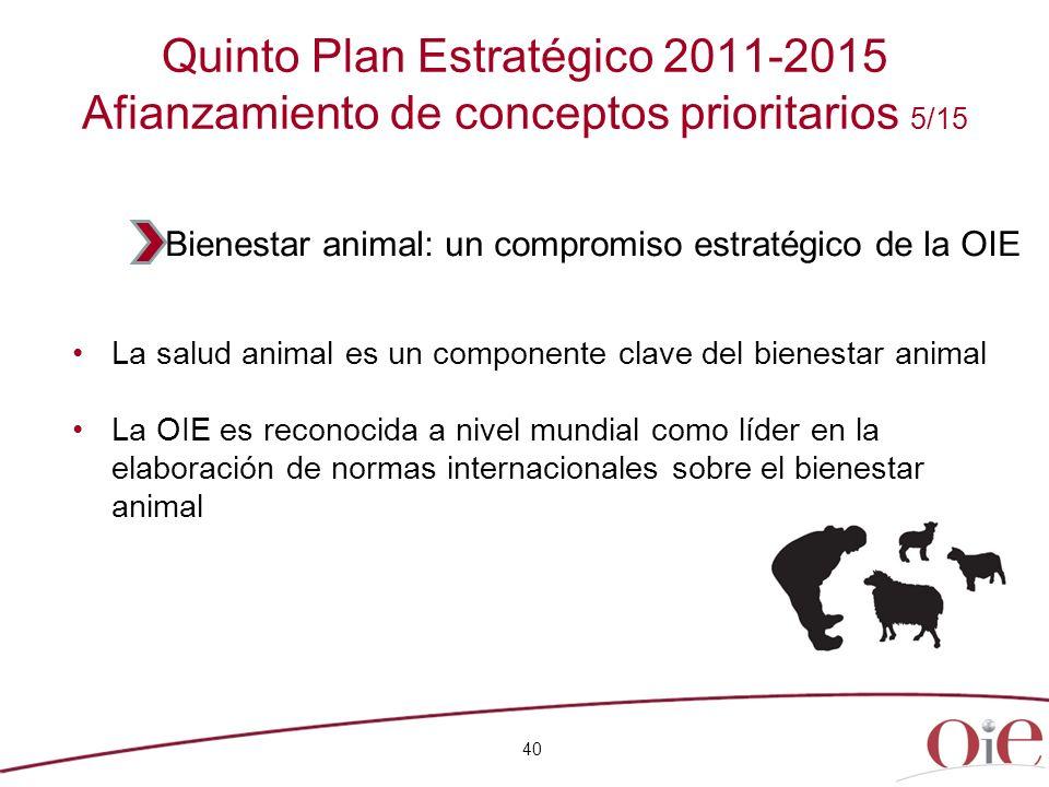 Quinto Plan Estratégico 2011-2015 Afianzamiento de conceptos prioritarios 5/15