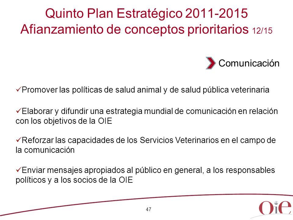 Quinto Plan Estratégico 2011-2015 Afianzamiento de conceptos prioritarios 12/15