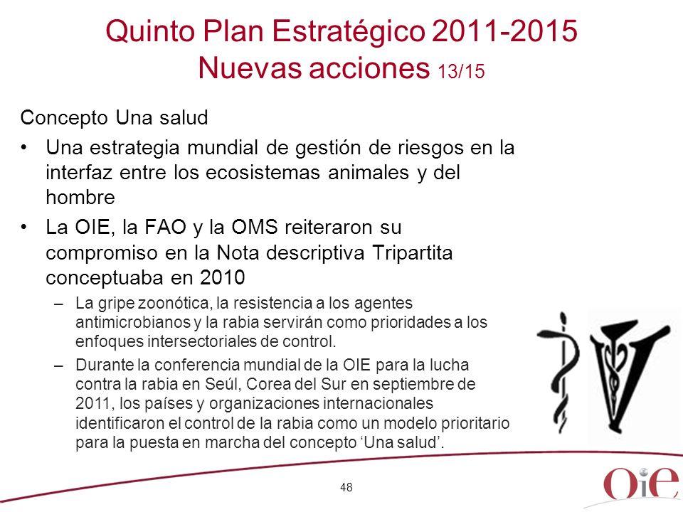 Quinto Plan Estratégico 2011-2015 Nuevas acciones 13/15