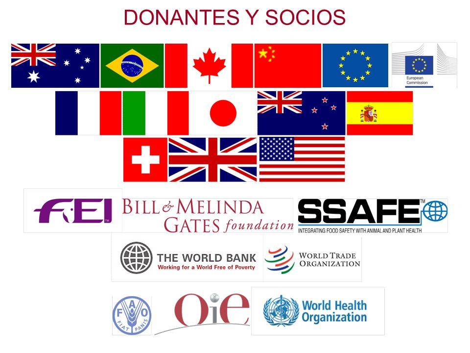 DONANTES Y SOCIOS