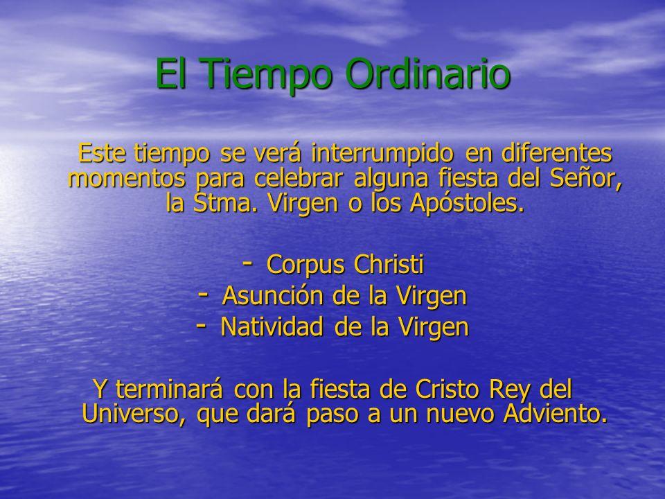 El Tiempo Ordinario Este tiempo se verá interrumpido en diferentes momentos para celebrar alguna fiesta del Señor, la Stma. Virgen o los Apóstoles.