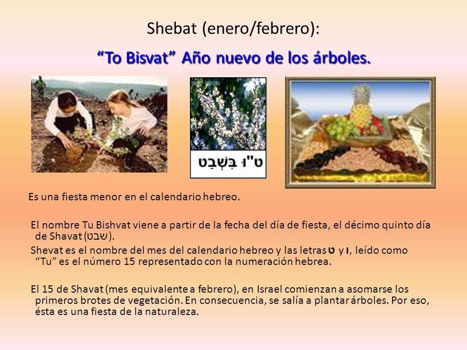 Shebat (enero/febrero): To Bisvat Año nuevo de los árboles.