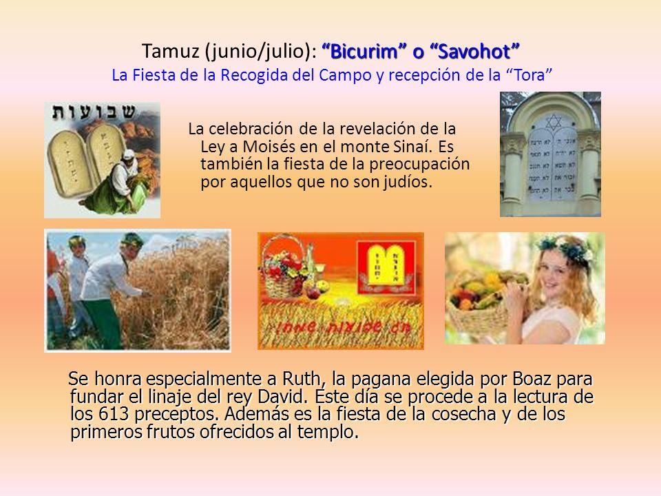 Tamuz (junio/julio): Bicurim o Savohot La Fiesta de la Recogida del Campo y recepción de la Tora