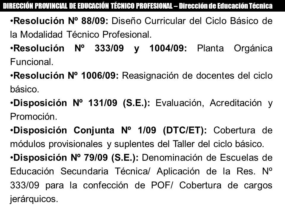 Resolución Nº 333/09 y 1004/09: Planta Orgánica Funcional.