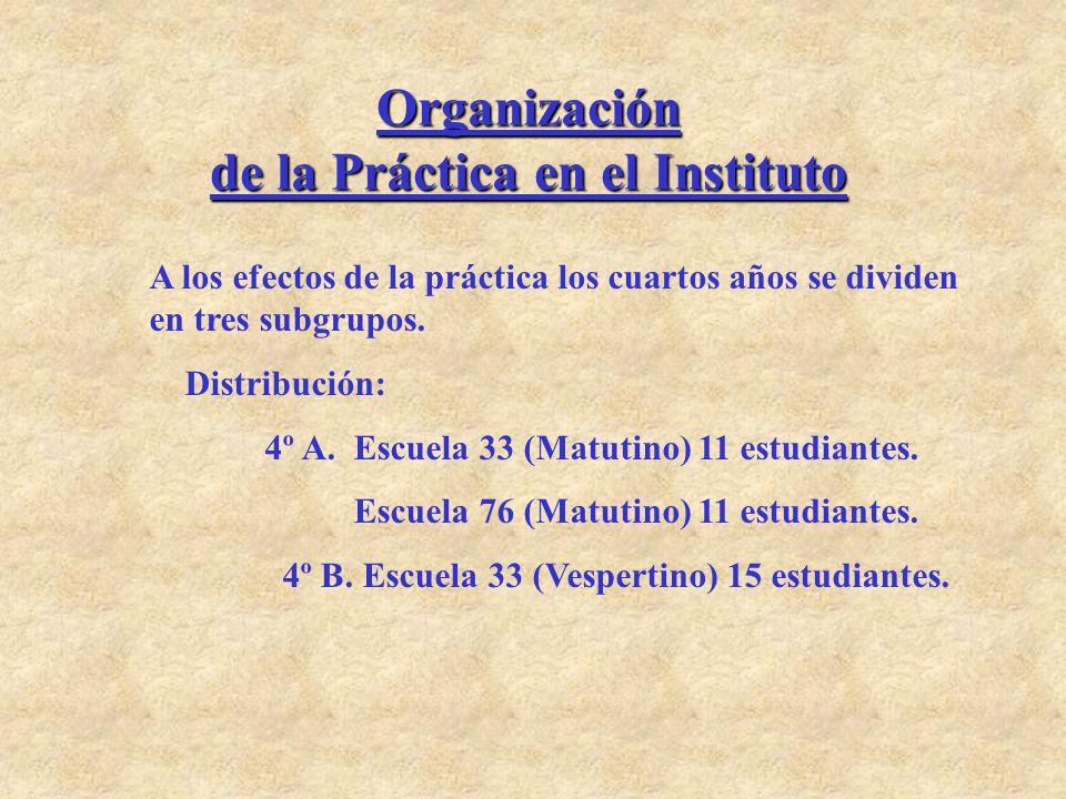 Organización de la Práctica en el Instituto