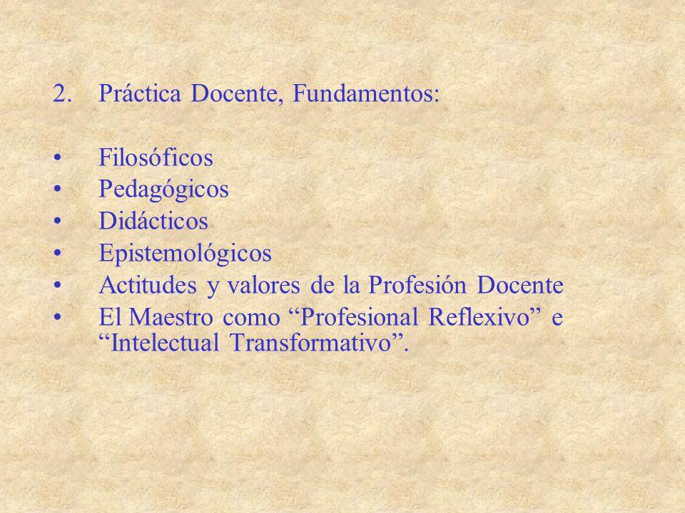 Práctica Docente, Fundamentos: