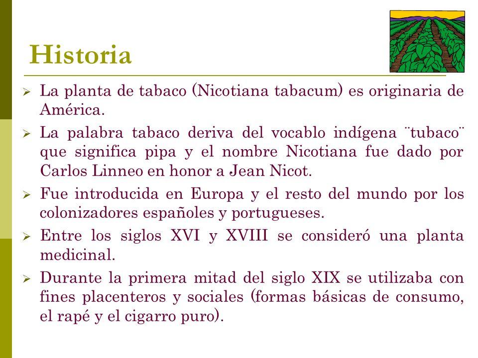 Historia La planta de tabaco (Nicotiana tabacum) es originaria de América.