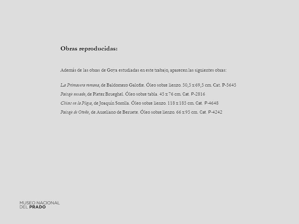 Obras reproducidas: Además de las obras de Goya estudiadas en este trabajo, aparecen las siguientes obras: