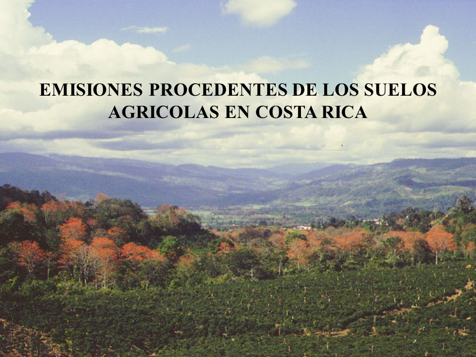 EMISIONES PROCEDENTES DE LOS SUELOS AGRICOLAS EN COSTA RICA