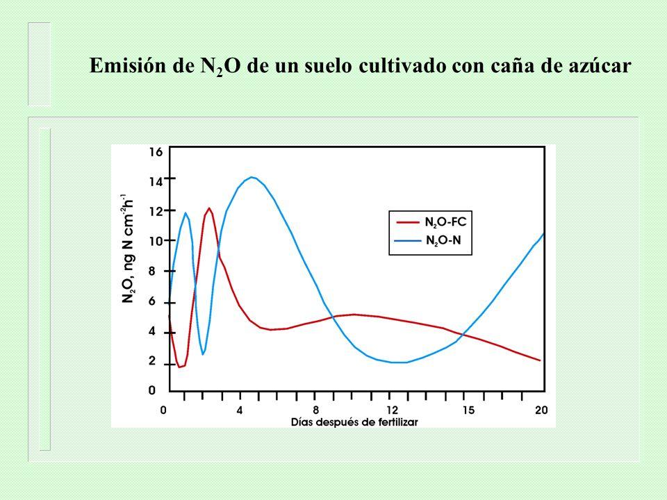 Emisión de N2O de un suelo cultivado con caña de azúcar