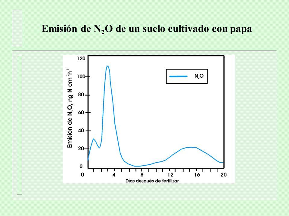 Emisión de N2O de un suelo cultivado con papa