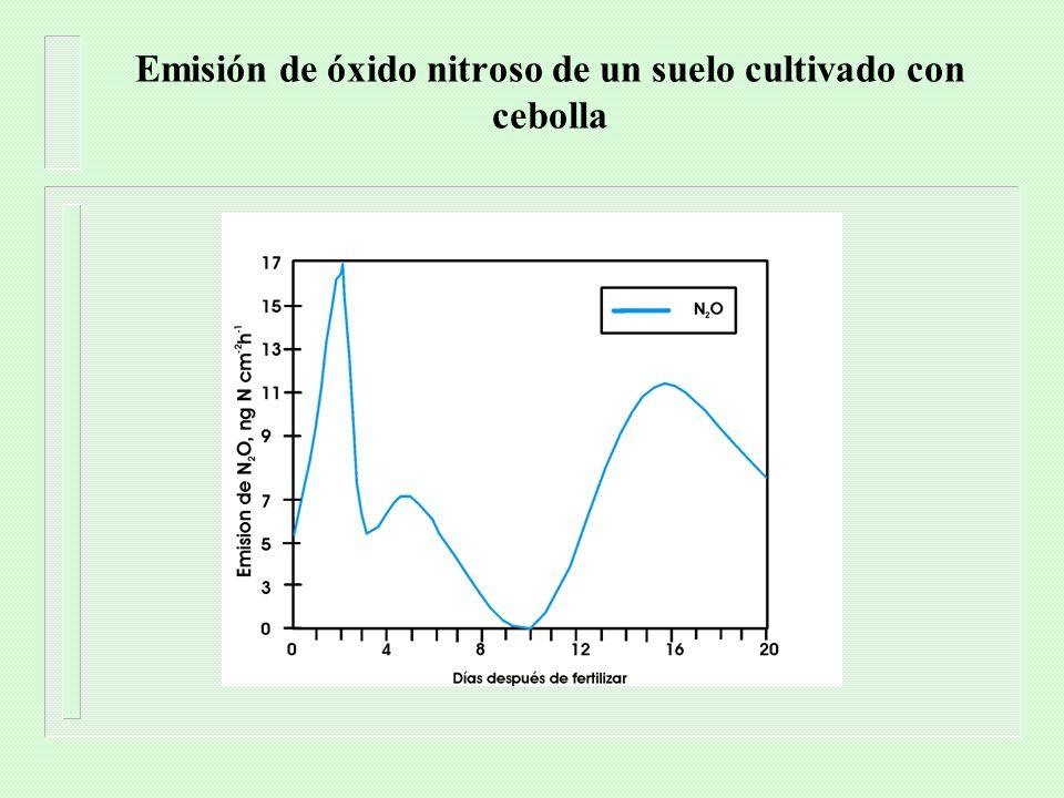 Emisión de óxido nitroso de un suelo cultivado con cebolla