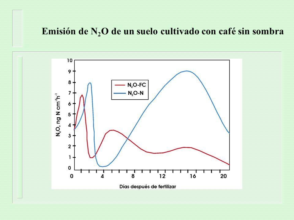 Emisión de N2O de un suelo cultivado con café sin sombra