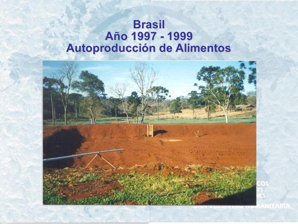 Brasil Año 1997 - 1999 Autoproducción de Alimentos