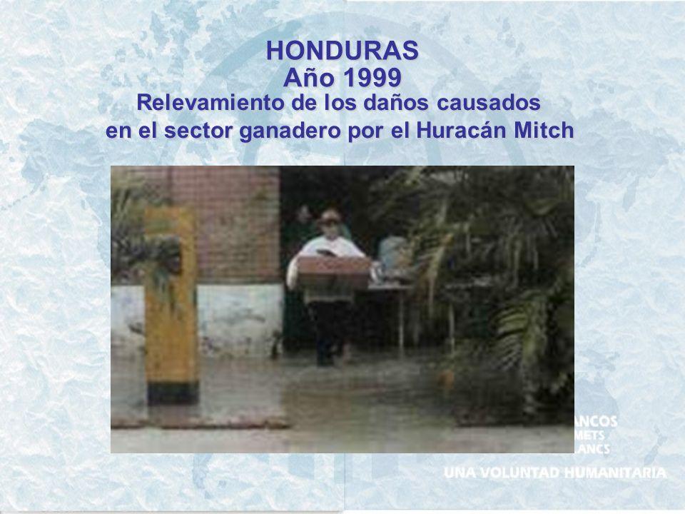 HONDURAS Año 1999 Relevamiento de los daños causados