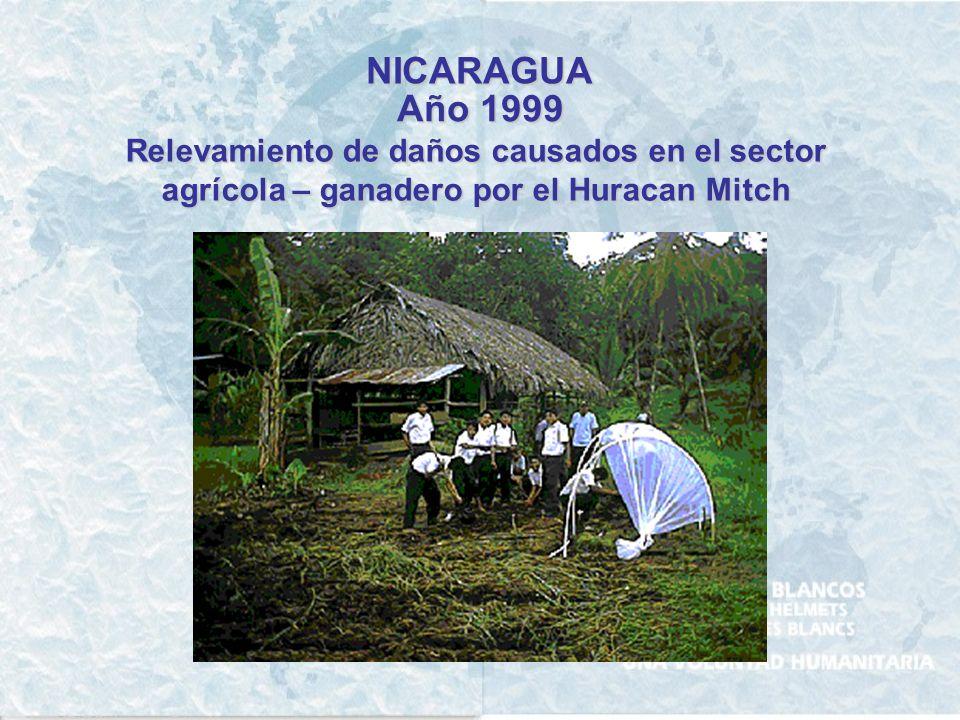 NICARAGUA Año 1999 Relevamiento de daños causados en el sector