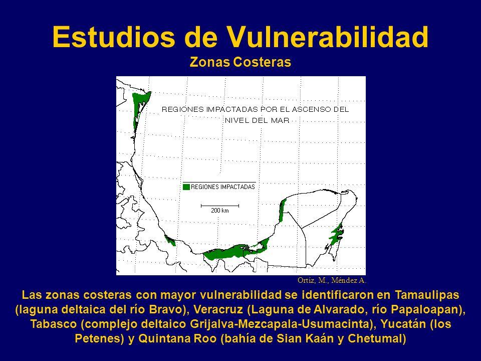 Estudios de Vulnerabilidad Zonas Costeras