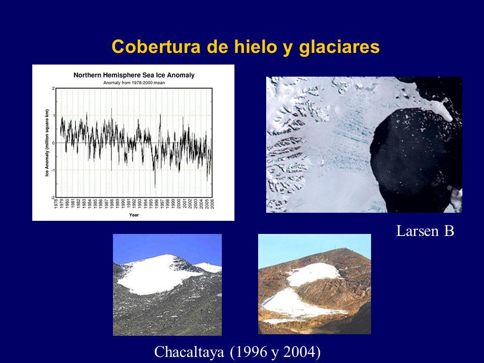 Cobertura de hielo y glaciares