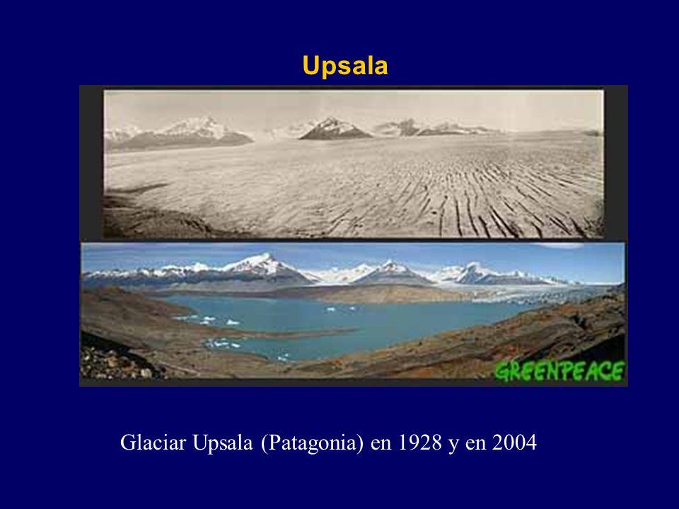 Upsala Glaciar Upsala (Patagonia) en 1928 y en 2004