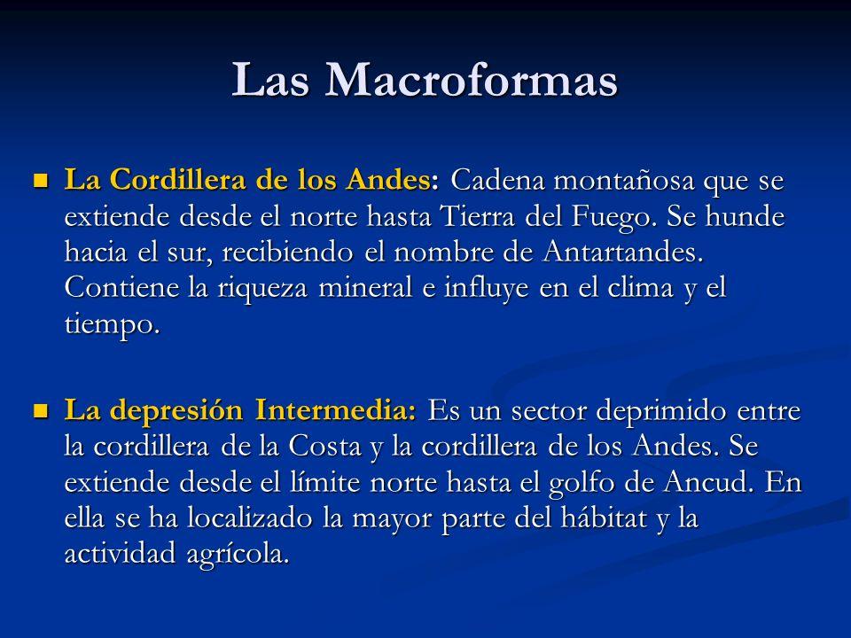 Las Macroformas