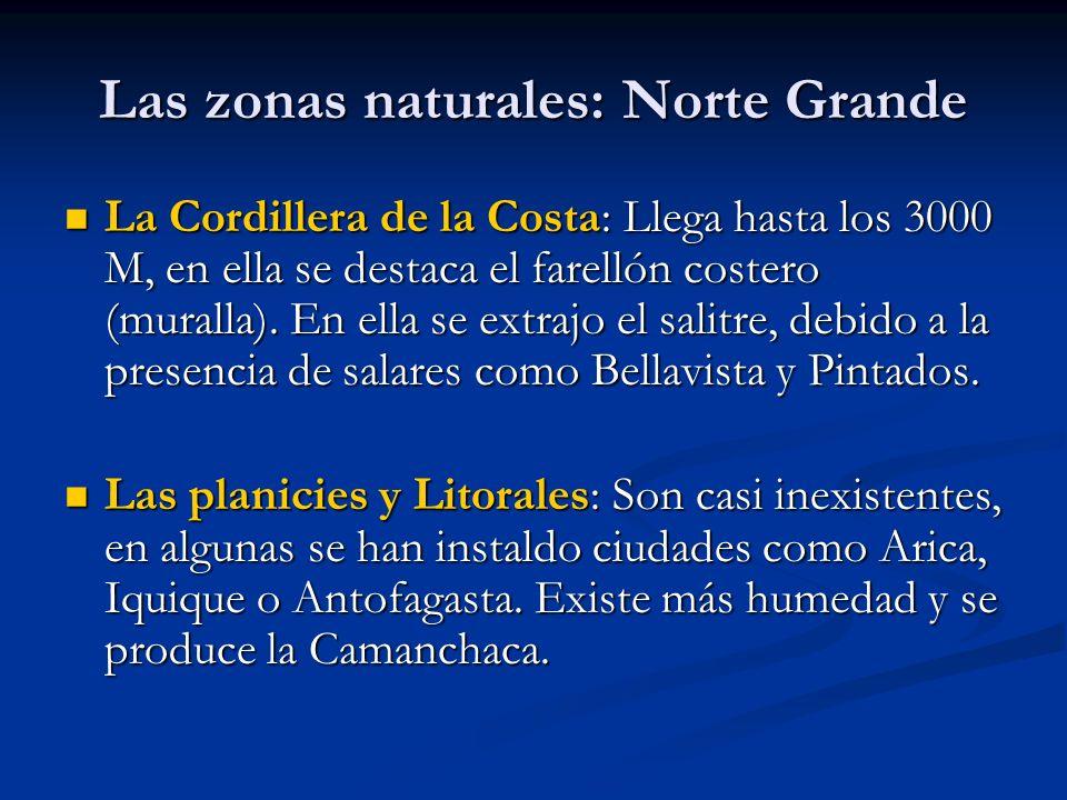 Las zonas naturales: Norte Grande