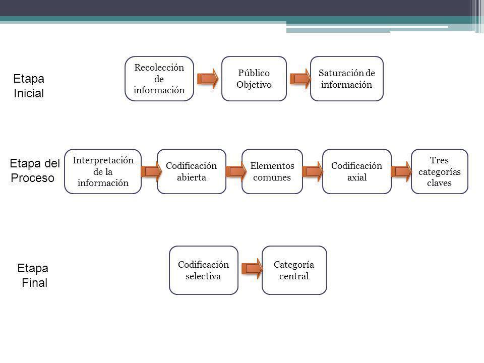 Etapa Inicial Etapa del Proceso Etapa Final Recolección de información