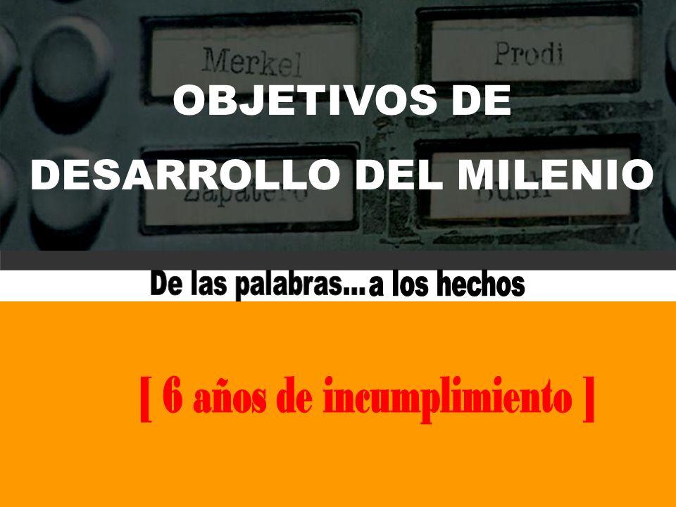 DESARROLLO DEL MILENIO