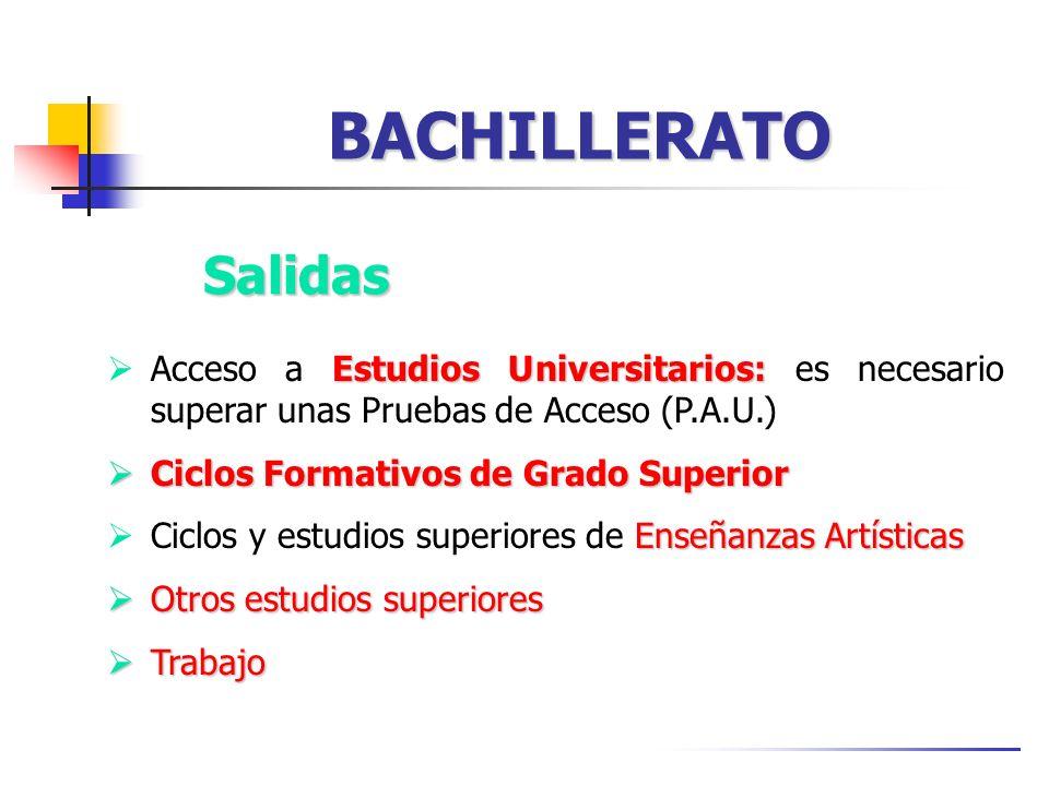 BACHILLERATO Salidas. Acceso a Estudios Universitarios: es necesario superar unas Pruebas de Acceso (P.A.U.)