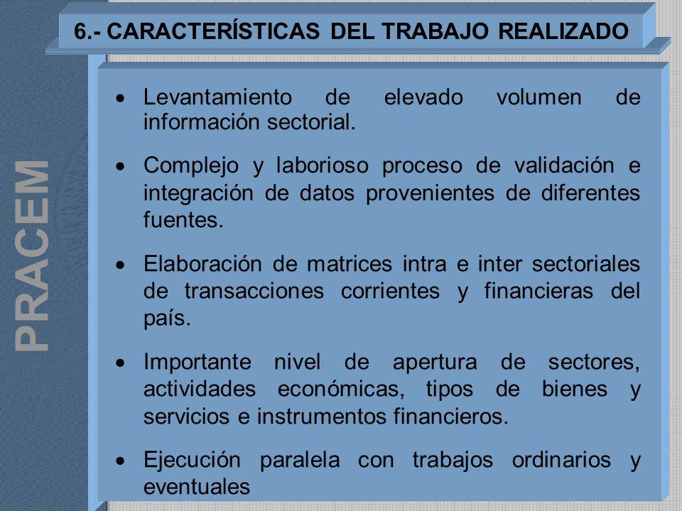 6.- CARACTERÍSTICAS DEL TRABAJO REALIZADO