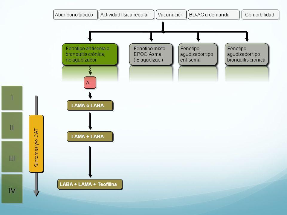 I II III IV Actividad física regular Vacunación BD-AC a demanda