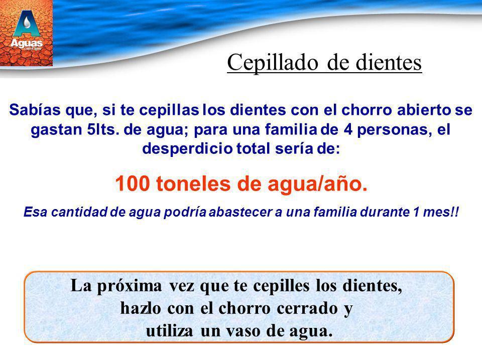 Cepillado de dientes 100 toneles de agua/año.