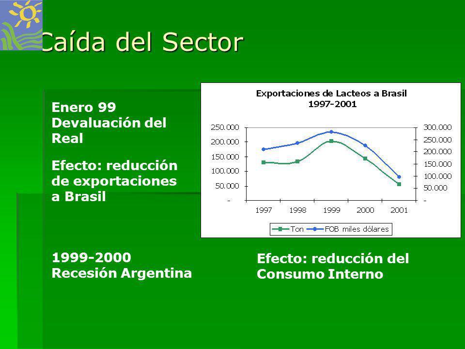 Caída del Sector Enero 99 Devaluación del Real Efecto: reducción
