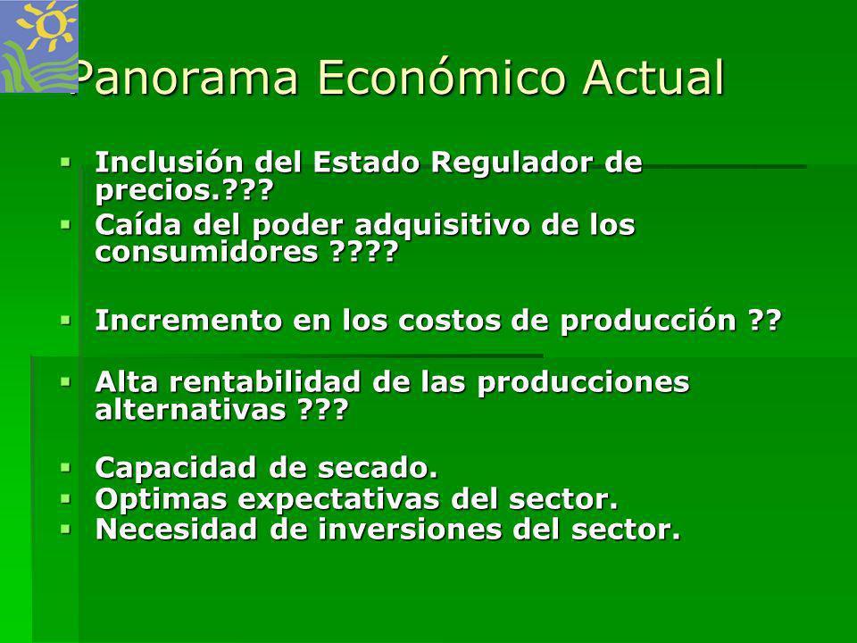 Panorama Económico Actual