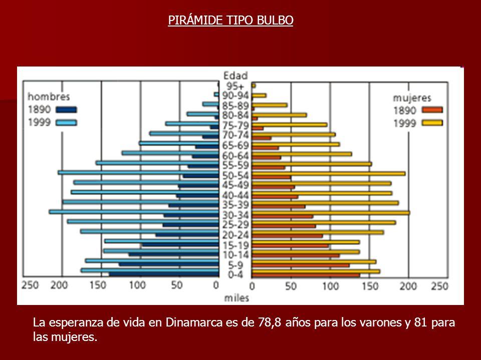 PIRÁMIDE TIPO BULBO La esperanza de vida en Dinamarca es de 78,8 años para los varones y 81 para las mujeres.
